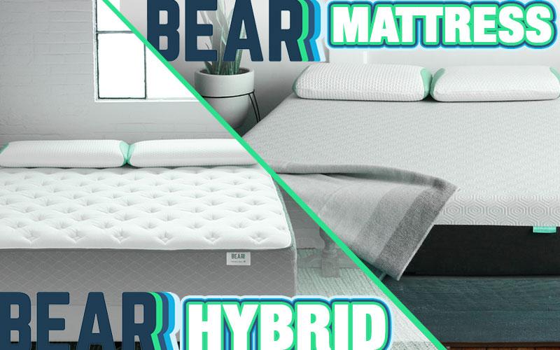 Bear Hybrid Vs Bear Mattress Comparison