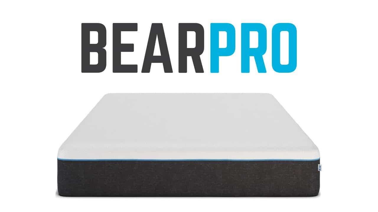 Bear Pro